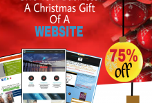 BUILD YOUR BUSINESS WEBSITE: SiteOnAShoeString™ Xmas Promo :