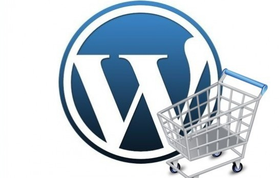 Online Store (WordPress) and SEO