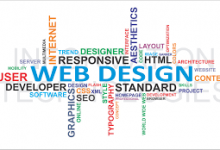 WEBSITE DESIGNING/DEVELOPING, TYPIST