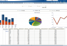 Business data analysis and reports