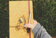 Freelancer, poet, CV writing