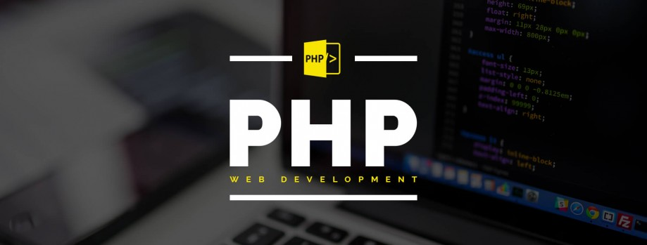 write, debug, fix and develop PHP, JAVA, python scripts