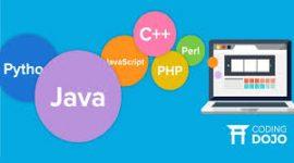 Learn java,c++, kotlin.python, php, javascript