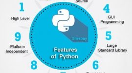Software Development using Python