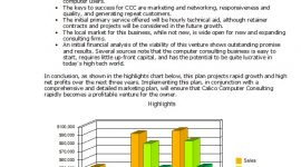 Compete 20+ Pages Custom Business with financial Models